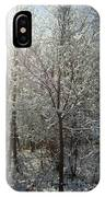 Sunshine And Snow IPhone Case