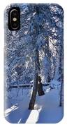 Sunshine Through Winter Trees IPhone Case