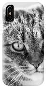 Surprised Cat IPhone Case