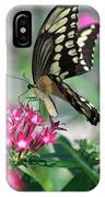 Swallowtail Butterfly 01 IPhone Case