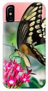 Swallowtail Butterfly 04 IPhone Case