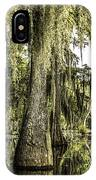 Swamp View IPhone Case