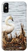 Swan On Shore IPhone Case