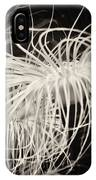 Swaying Anemone Bw IPhone Case