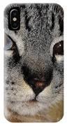 Cat - Sweet - Boy IPhone Case