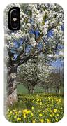 Sweet Cherry Orchard In Full Bloom IPhone Case