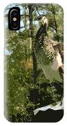 Sweet Pea On The Hen House Roof IPhone Case