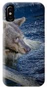 Black Bear On Blue IPhone Case