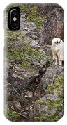 Switchback Goat 4 IPhone X / XS Case