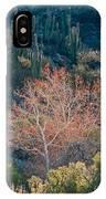 Sycamore And Saguaro Cacti, Arizona IPhone Case