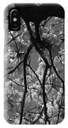 Tabebuia Tree 1 IPhone Case