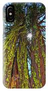 Tahoe Trees - Lake Tahoe By Diana Sainz IPhone Case