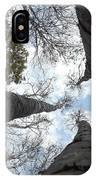 Tall Birches IPhone Case