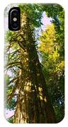 Tall Tall Trees IPhone Case