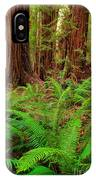 Tall Trees Grove IPhone Case