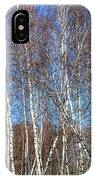 Tall White Birches IPhone Case