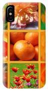 Tangerine Dream Window IPhone Case