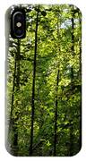 Tannehill Forest IPhone Case