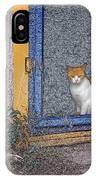 Taos Cat IPhone Case