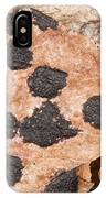 Tar Spot Fungus On Sycamore IPhone Case