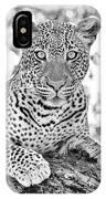 Tarangire Leopard IPhone Case