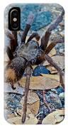 Tarantula Spider In Park Sierra Near Coarsegold-california IPhone Case