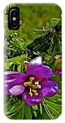 Tarbush In Chihuahuan Desert Of Big Bend National Park-texas   IPhone Case
