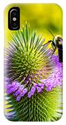Teasel And Bee IPhone Case