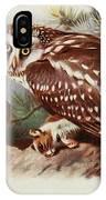 Tengmalms Owl IPhone Case