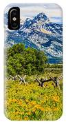 Tetons In The Spring IPhone Case