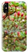 Tetragnathidae Web In Azalea - Cape Cod Ma IPhone Case