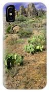 Texas Desert IPhone Case