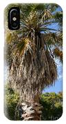Texas Palm IPhone Case