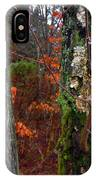 Textures Of Fall IPhone Case