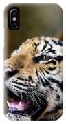 Thai Bengal Tiger IPhone Case