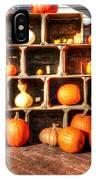 Thanksgiving Pumpkin Display No. 2 IPhone Case