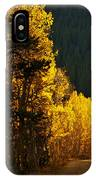 The Golden Road IPhone Case
