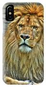 The Attentive Lazy Boy At The Buffalo Zoo IPhone Case