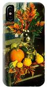 The Autumn Chair IPhone Case