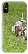 The Bassets IPhone Case