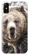 The Bathroom Bear IPhone Case