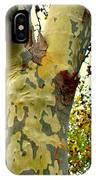 The Beatiful Sycamore IPhone Case