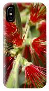 The Bee And Bottlebrush IPhone Case