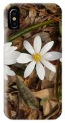 The Bloodroot Trio IPhone Case