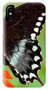 The Butterfly And The Zinnia IPhone Case