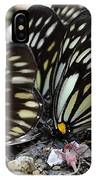 The Butterfly Gathering IPhone Case