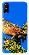 The Cactus Wren IPhone Case