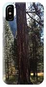 The Chapel Yosemite IPhone Case
