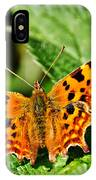 The Comma -- Polygonia C-album IPhone Case