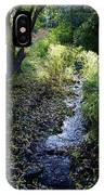 The Creek At Finch Arboretum IPhone Case